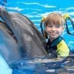 Delfinari: consentito il bagno con i delfini nei delfinari, per progetti di educazione ambientale