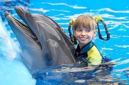 Delfinari e bagno con i delfini da oggi è possibile anche in italia