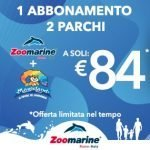 co-marketing parchi divertimento